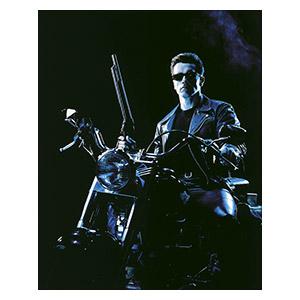 Terminator. Размер: 40 х 50 см